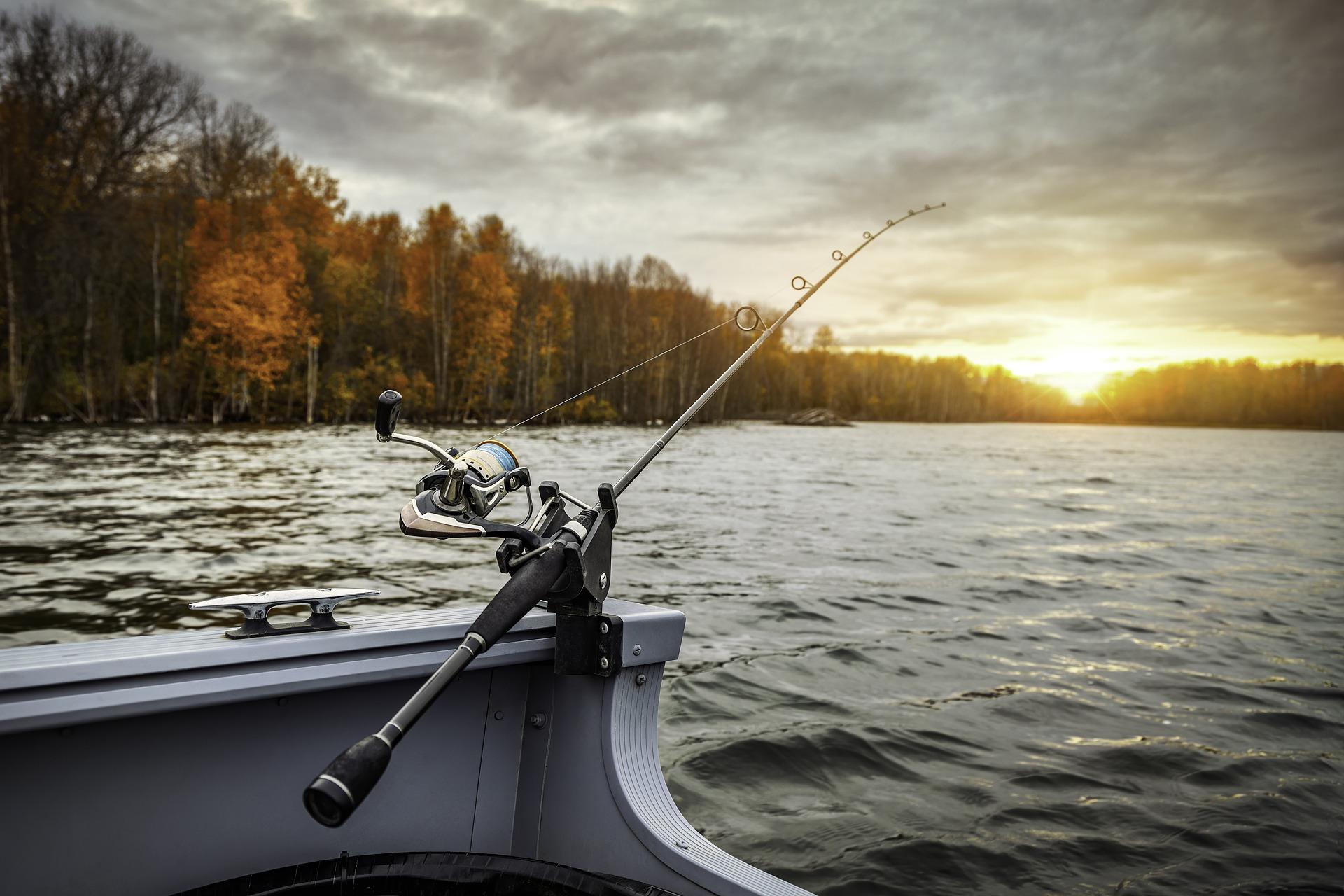 Consejos básicos para llevar a cabo una pesca efectiva